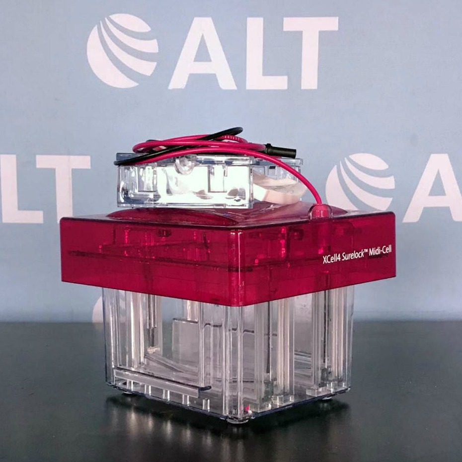 XCell4 SureLock Midi-Cell Electrophoresis System Name