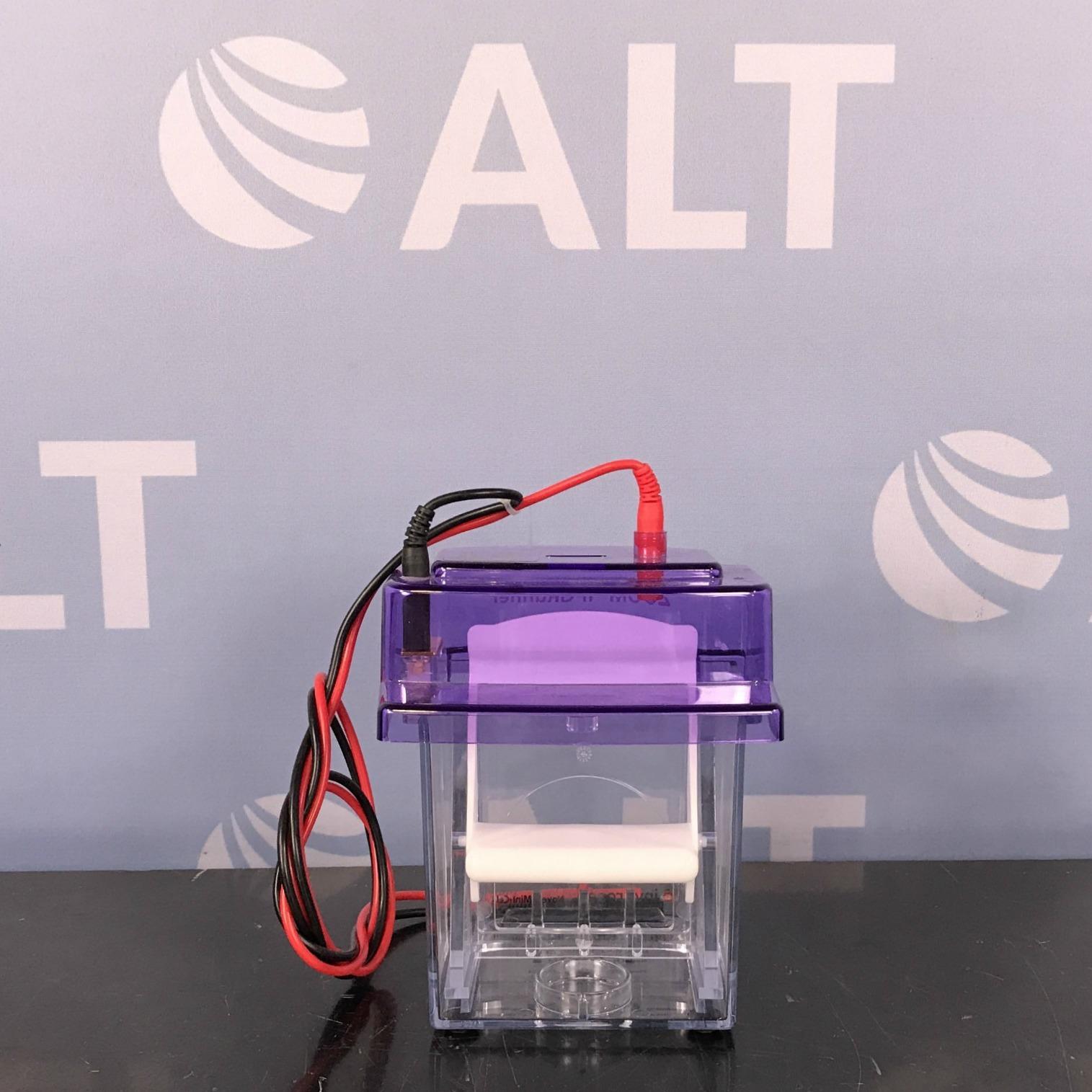 Invitrogen ZOOM IPGRunner Mini-Cell Image